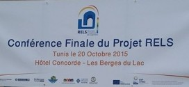Final Conference of the RELS Project