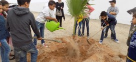 The celebration of the National Day of the Tree at the site of the Taparura project